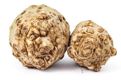 Organic celery roots. Two fresh organic celery roots with leaves on a white background Royalty Free Stock Image