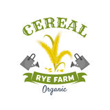 Organic cereal emblem with rye ears and grain. Cereal ears isolated symbol. Organic farm rye grain, spikelets and leaves, flanked by watering cans and ribbon Royalty Free Stock Image