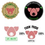 100% organic, certified, fresh farm, premium pork meat logos or labels set with pink pig head. Vector illustration. Design Vector Illustration