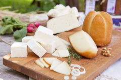 Organic cheese variation. Royalty Free Stock Photos