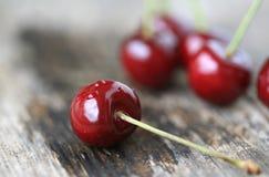 Organic cherries Stock Image