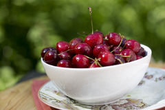 Organic Cherries Stock Photography