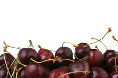 Organic Cherries Royalty Free Stock Photos