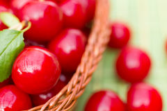 Organic Cherries in a Basket Stock Photo