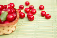 Organic Cherries in a Basket Stock Image