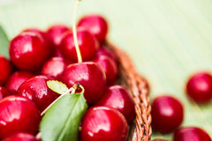 Organic Cherries in a Basket Royalty Free Stock Photos