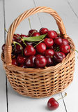 Organic Cherries Stock Photos