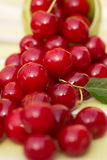 Organic Cherries in a Bowl Stock Image