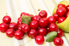 Organic Cherries in a Bowl Royalty Free Stock Image