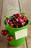 Organic Cherries in the green bucket Stock Images
