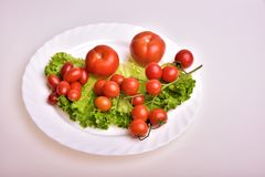 Organic cherry tomato. And lettuce Stock Images