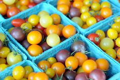 Organic cherry tomatoes Royalty Free Stock Photos