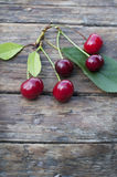 Organic cherry Royalty Free Stock Image