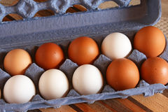 Organic Chicken Eggs in Carton Royalty Free Stock Photo