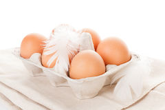 Organic chicken eggs. Organic chicken eggs in paper box on white background Royalty Free Stock Photos