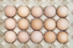 Organic chicken eggs in tray Easter Stock Photo