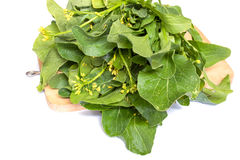 Organic Chinese cabbage. On chopping block Royalty Free Stock Photo