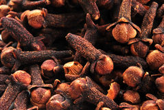 organic clove, also to use as background Stock Photo
