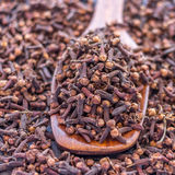 Organic Cloves. Scattered organic and exotic cloves closeup Royalty Free Stock Photo