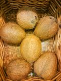 Organic coconuts at market in a basket. Harvesting concept. stock image