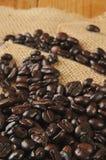 Organic coffee beans Stock Photos