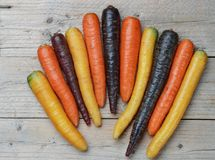 Organic colored yellow, red, orange and purple carrots. Colorful vegetables. Organic colored yellow, red, orange and purple carrots on a wooden Board. Rustic stock images