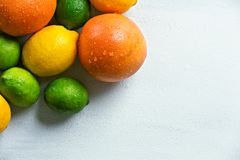Citrus fruits. royalty free stock photos