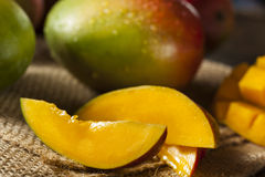 Organic Colorful Ripe Mangos Royalty Free Stock Photo