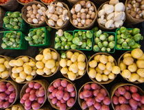 Organic Colors. Rows with small baskets of potatoes, mushrooms and cabbage Stock Photography