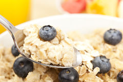 Organic Cooked oatmeal with blueberries Stock Photos