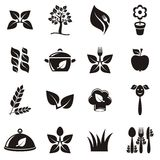 Organic cooking icons Royalty Free Stock Images