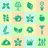 Organic cooking icons Stock Photos