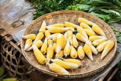 Organic corn ears at asian market Stock Photography
