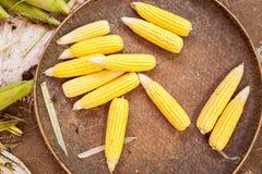 Organic corn ears at asian market Stock Image