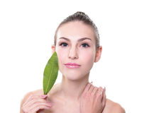 Organic cosmetic concept royalty free stock photos