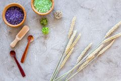 Cosmetic set with wheat herbs and sea salt in bowl on stone table background flat lay Stock Image