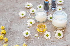 Organic cosmetics with camomile on stone background Stock Photography