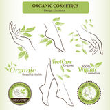 Organic Cosmetics Design Set with contoured female body parts  - foot, hand Royalty Free Stock Photos