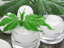 Organic cosmetics, facial cream Stock Images
