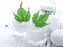Organic cosmetics, facial cream Stock Photo