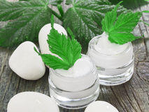 Organic cosmetics, facial cream Stock Image