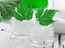 Organic cosmetics, facial cream Royalty Free Stock Image