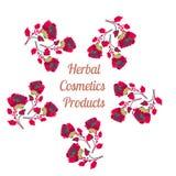 Organic cosmetics product logo. Natural  background. Vector illustration. Organic cosmetics product logo. Natural cosmetics background. Vector illustration Royalty Free Stock Image