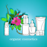 Organic cosmetics Royalty Free Stock Photo