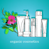 Organic cosmetics Royalty Free Stock Photos