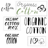 Organic cotton.Vector calligraphy. Hand drawn lettering Royalty Free Stock Photos