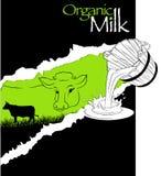 Organic cow. A illustration of organic milk graphic Royalty Free Stock Image