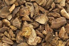 Organic cracked Chebulic Myrobalan or Choti Harad (Terminalia chebula). Stock Image