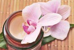 Organic Cream SPA Royalty Free Stock Photo