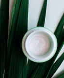 Organic creams lotions for the face. And body Stock Photo